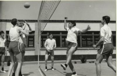 Volleybal op het T.I.S.A.