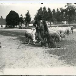 Herder Petrus De Paepe