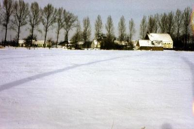 Sneeuw in de Zevergemse Landuitstraat