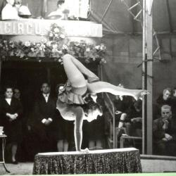 Circus Jhony treedt op in Gavere