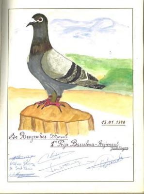 1ste prijs bij de duivenvlucht vanuit Barcelona